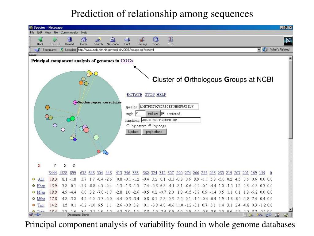 Prediction of relationship among sequences