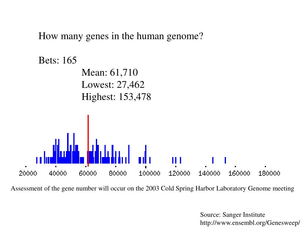 How many genes in the human genome?