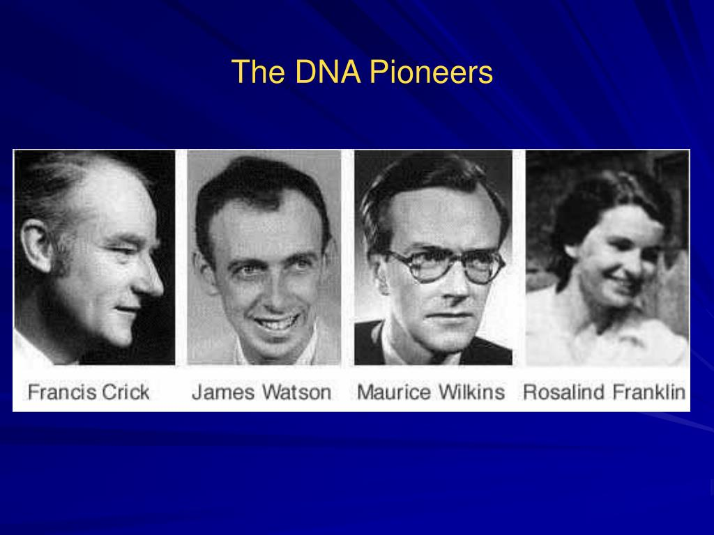 The DNA Pioneers