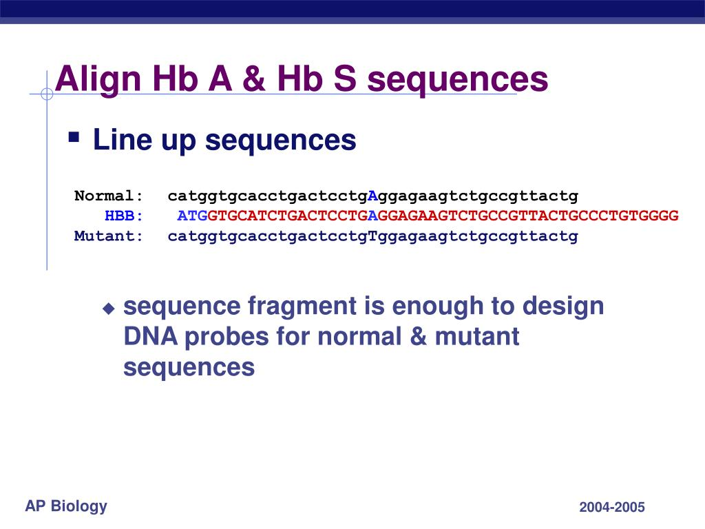Align Hb A & Hb S sequences