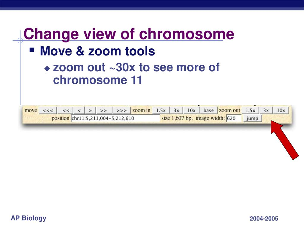Change view of chromosome
