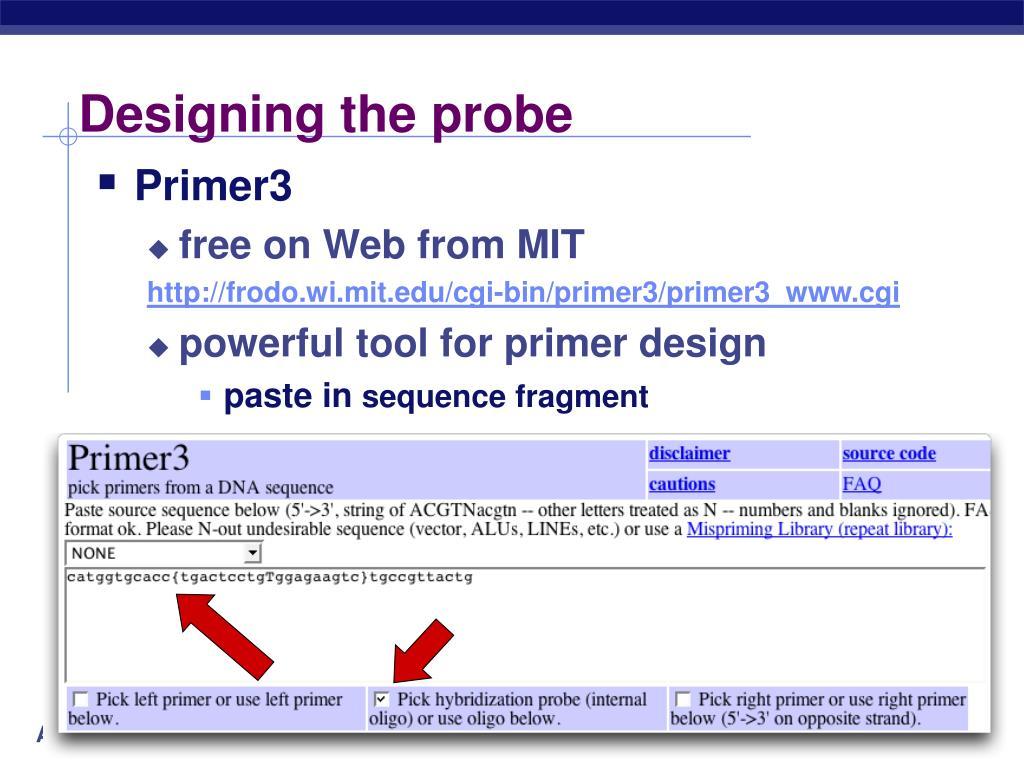 Designing the probe