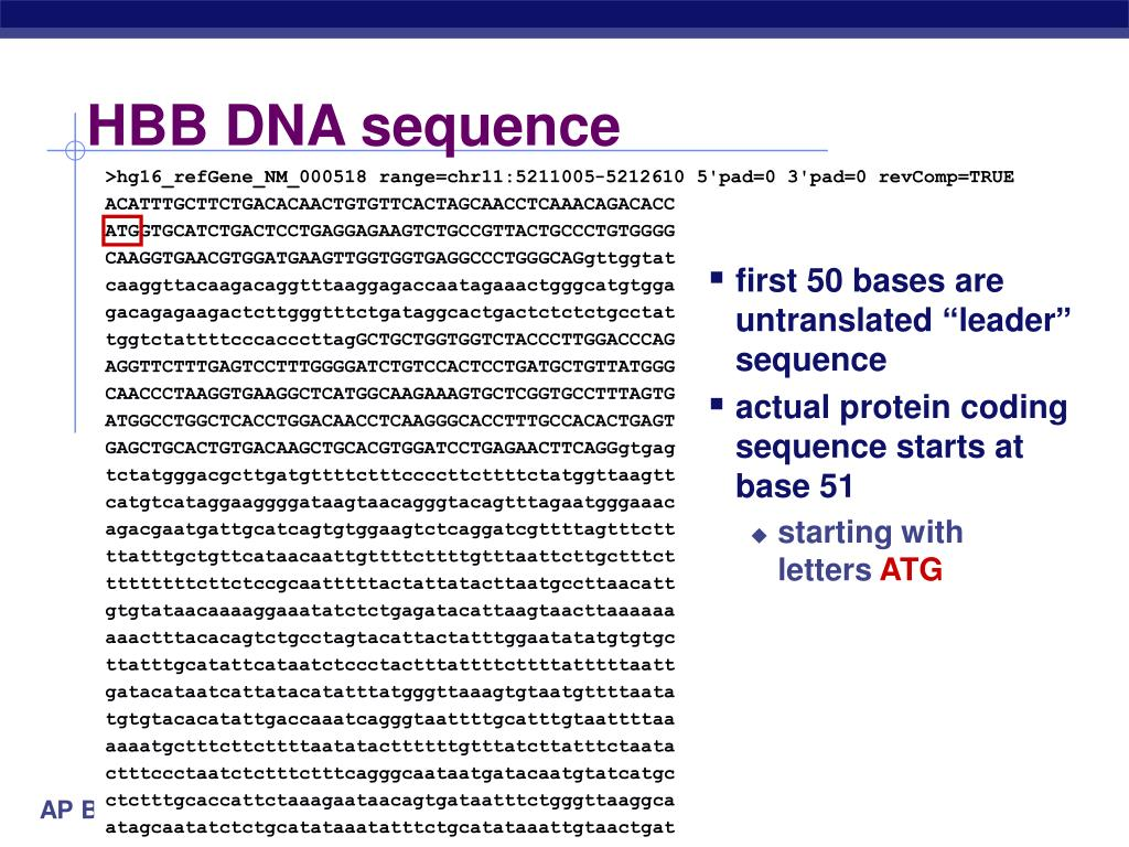 HBB DNA sequence