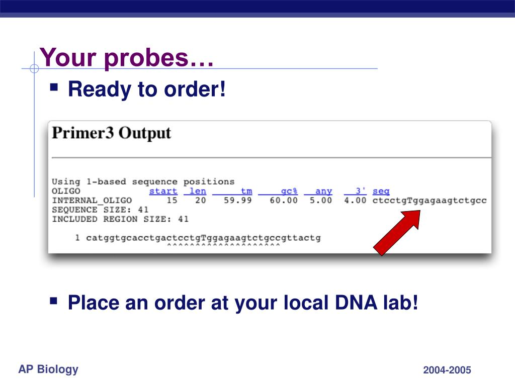 Your probes…