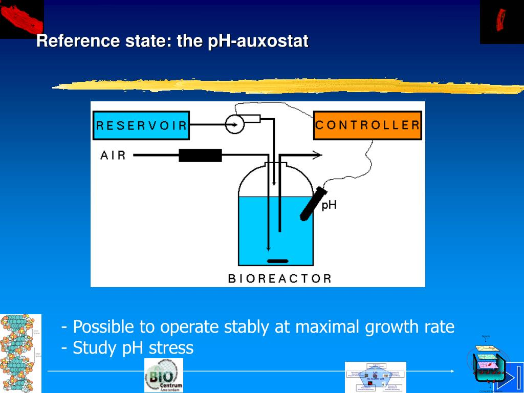 Reference state: the pH-auxostat