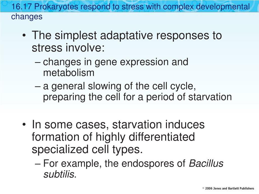 16.17 Prokaryotes respond to stress with complex developmental changes