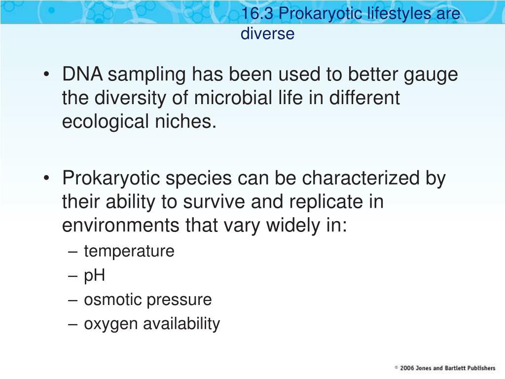 16.3 Prokaryotic lifestyles are diverse