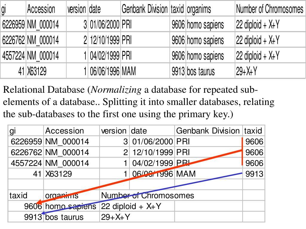 Relational Database (