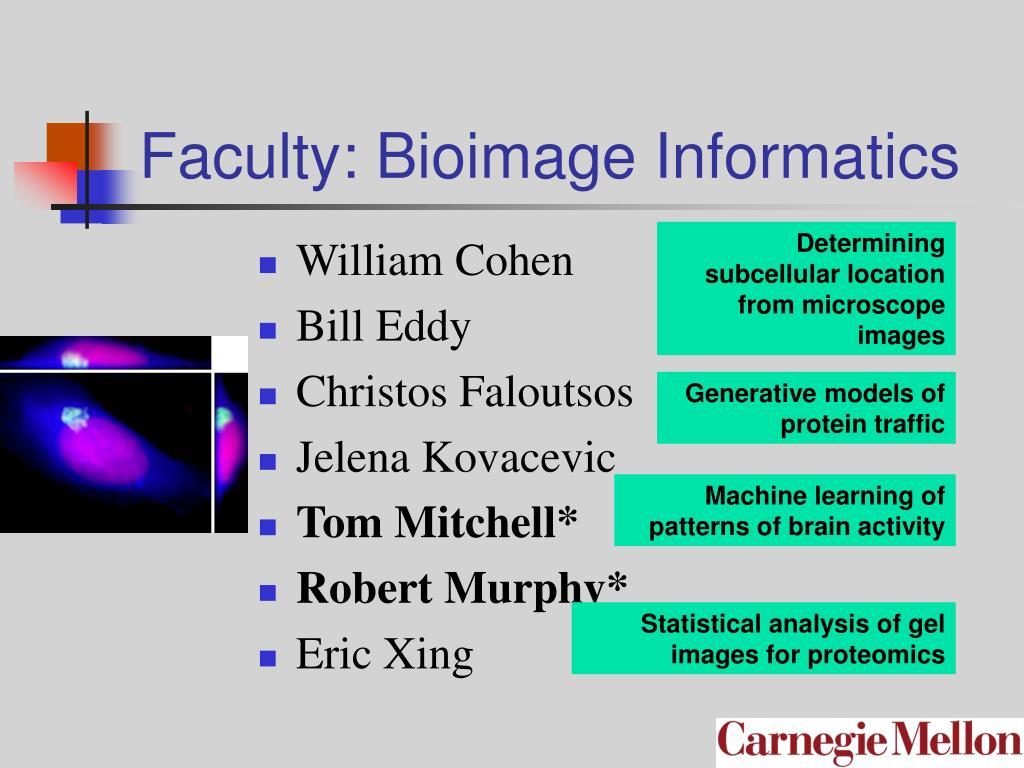 Faculty: Bioimage Informatics