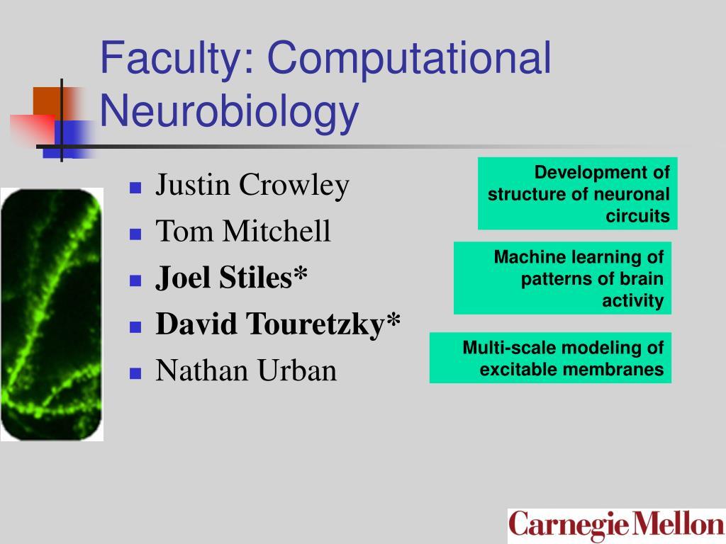 Faculty: Computational Neurobiology