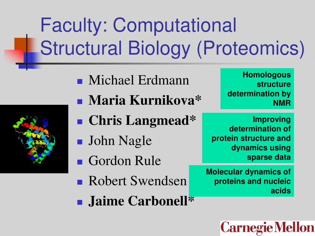 Faculty: Computational Structural Biology (Proteomics)