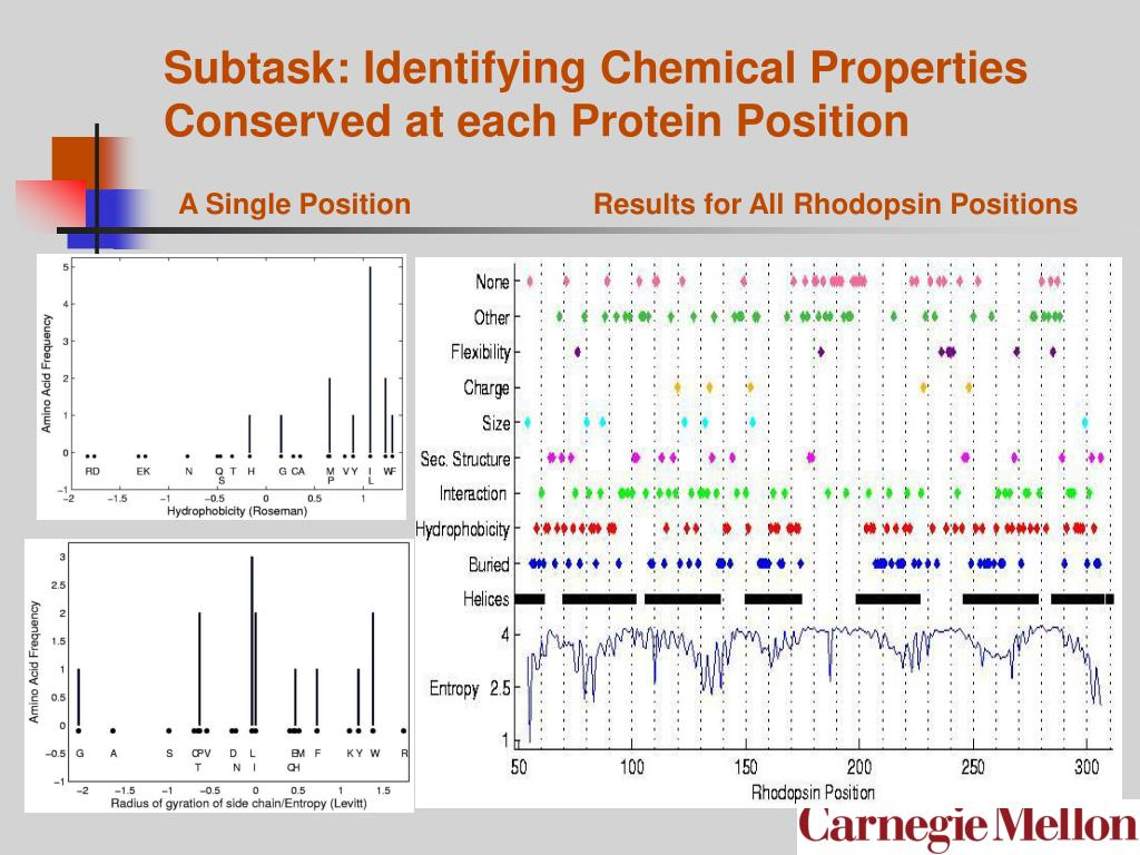 Subtask: Identifying Chemical Properties Conserved at each Protein Position