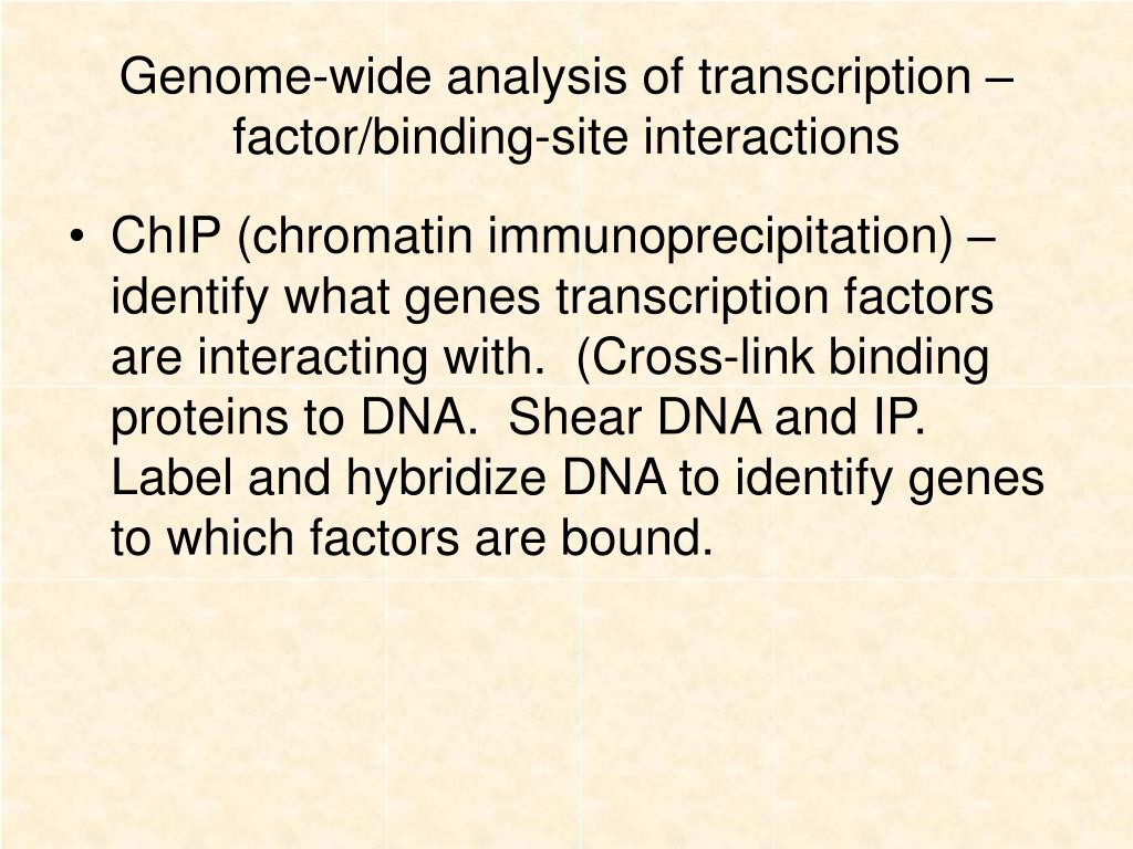 Genome-wide analysis of transcription –factor/binding-site interactions