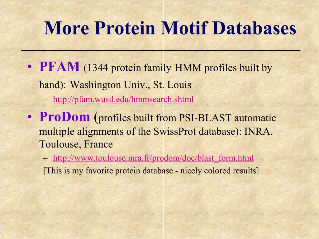 More Protein Motif Databases
