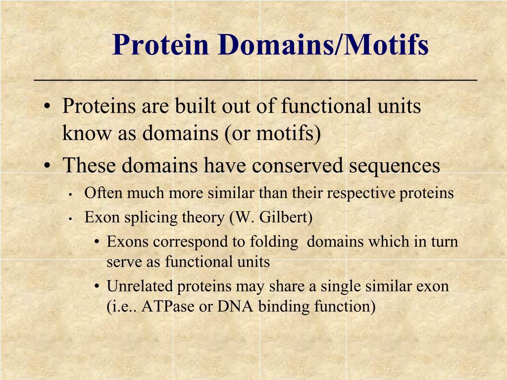 Protein Domains/Motifs