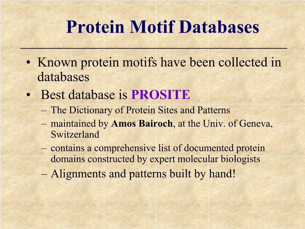 Protein Motif Databases