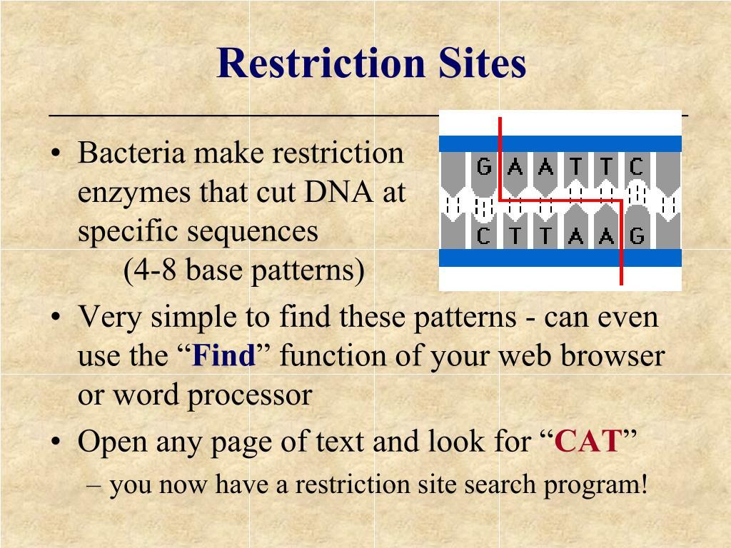 Restriction Sites