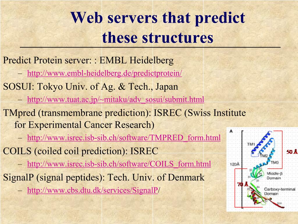 Predict Protein server: : EMBL Heidelberg