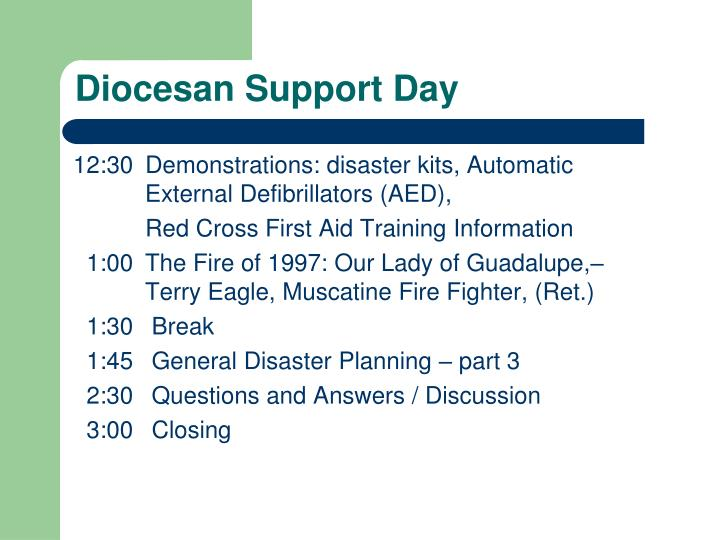 Diocesan support day3 l.jpg