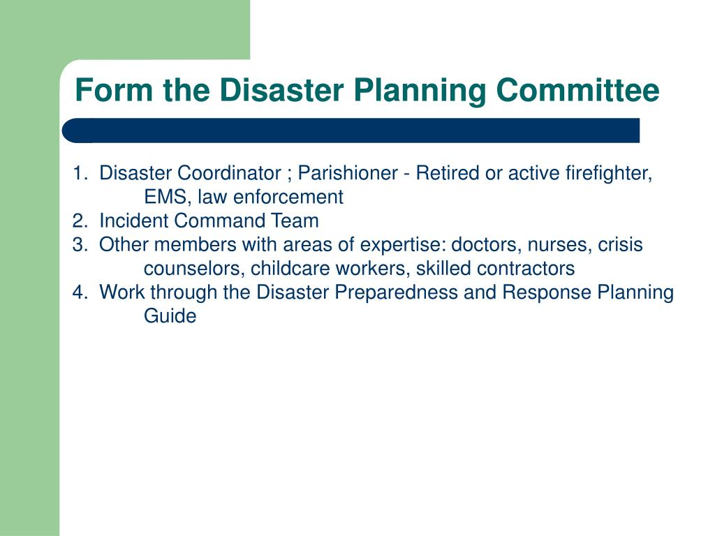 Form the Disaster Planning Committee