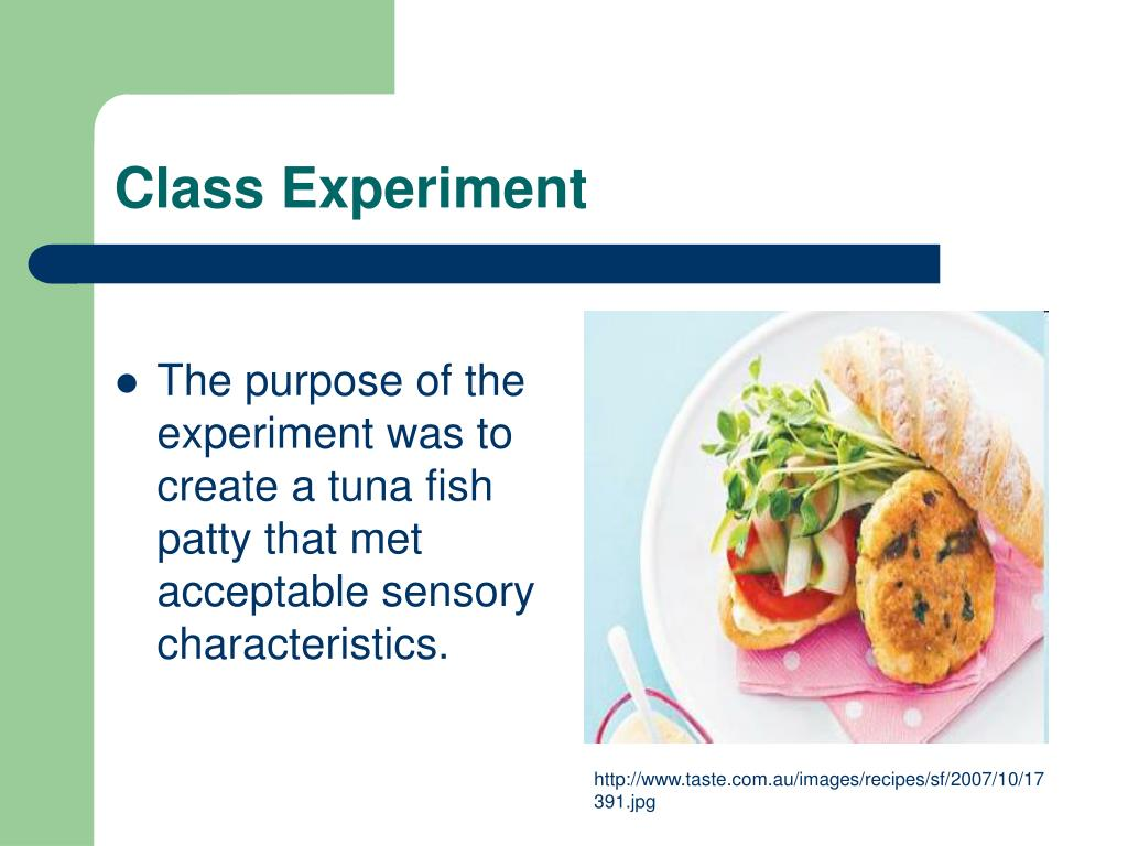 The purpose of the experiment was to create a tuna fish patty that met acceptable sensory characteristics.