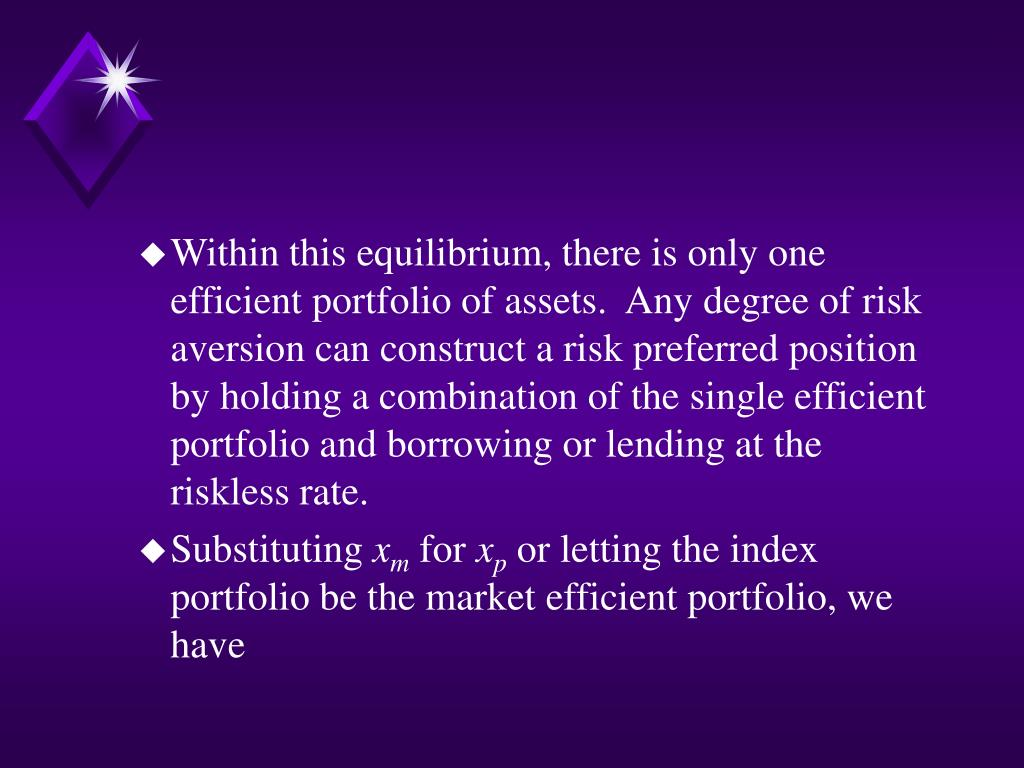 Within this equilibrium, there is only one efficient portfolio of assets.  Any degree of risk aversion can construct a risk preferred position by holding a combination of the single efficient portfolio and borrowing or lending at the riskless rate.