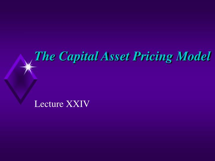 The capital asset pricing model l.jpg