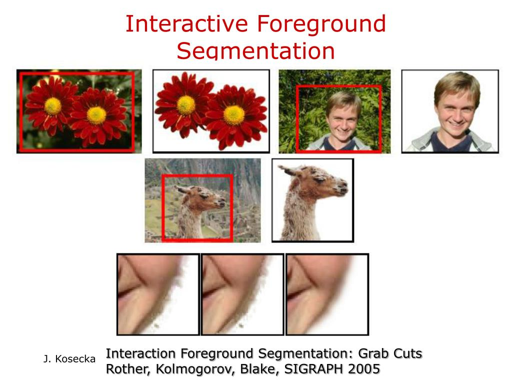 Interactive Foreground Segmentation