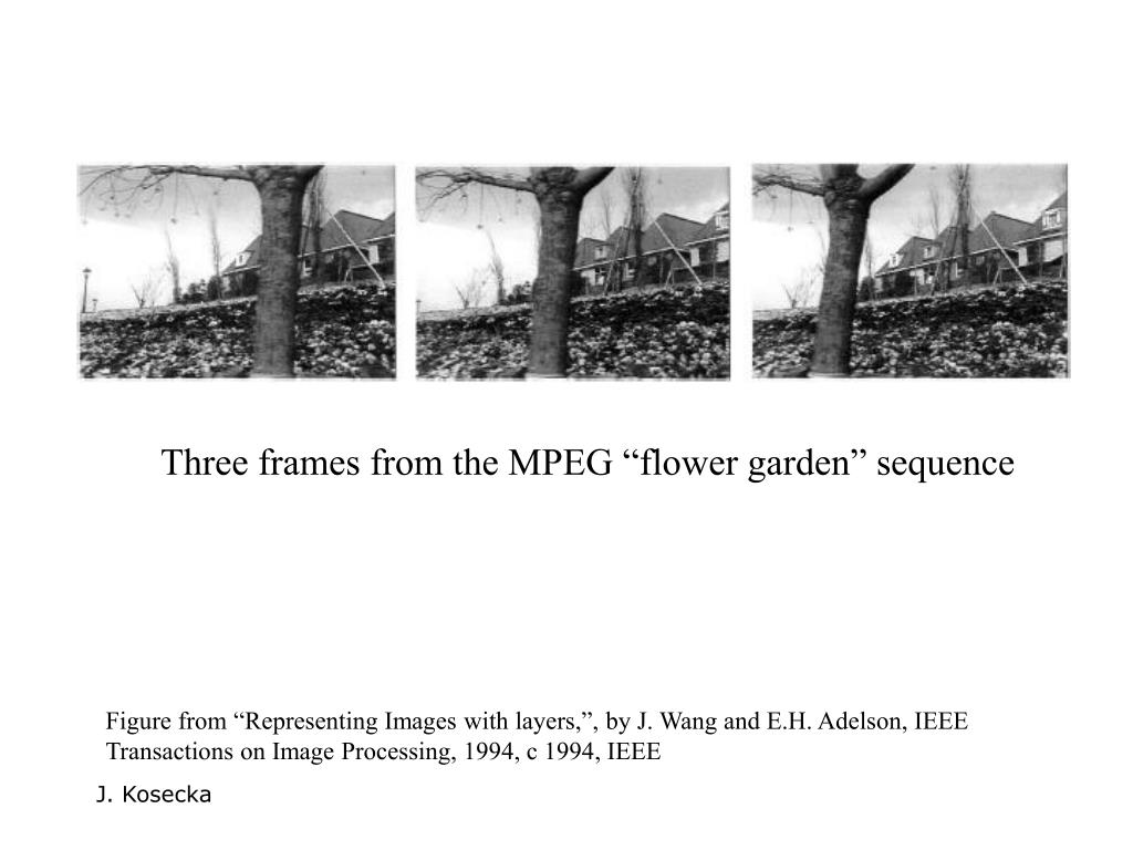 "Three frames from the MPEG ""flower garden"" sequence"