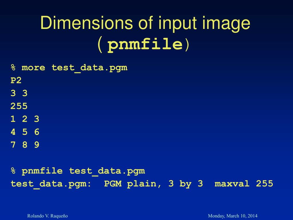 Dimensions of input image