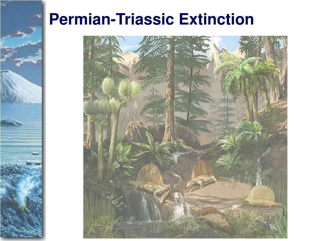 Permian-Triassic Extinction