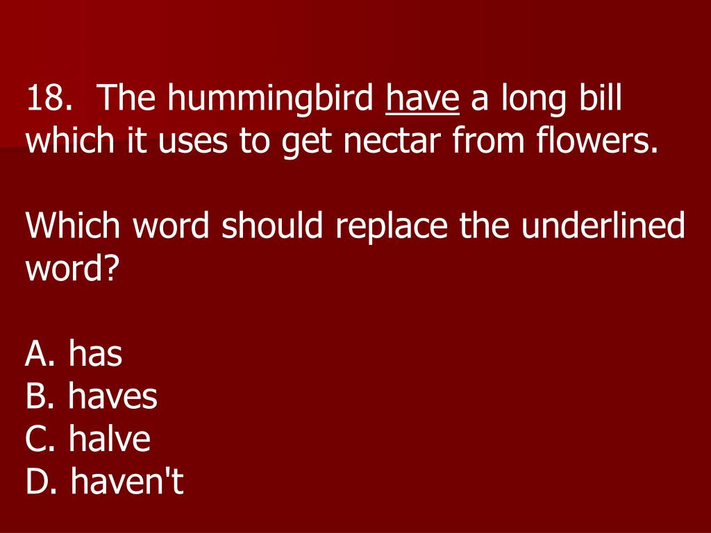 18.  The hummingbird