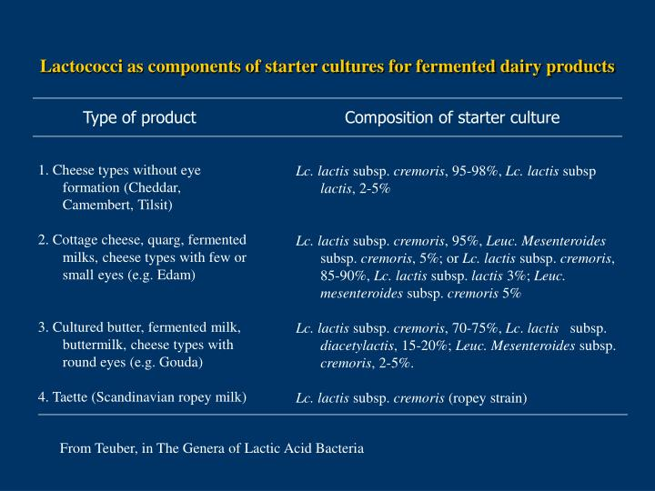 Lactococci as components of starter cultures for fermented dairy products