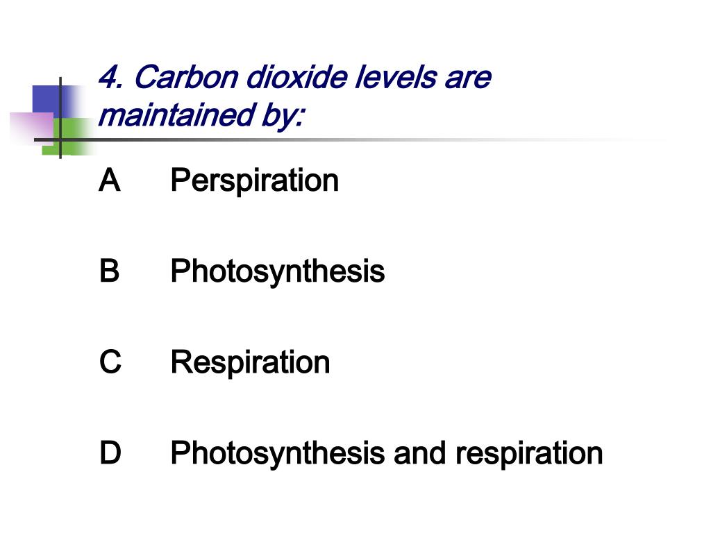 4. Carbon dioxide levels are maintained by: