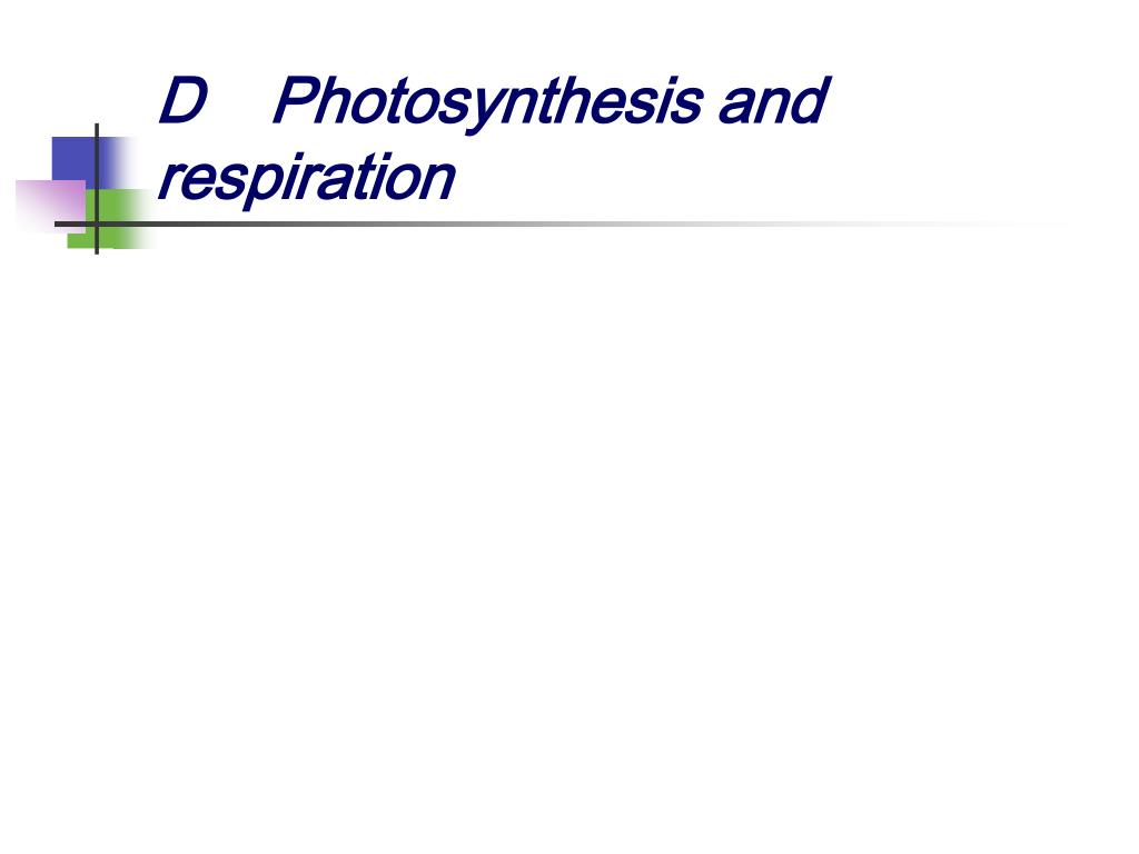 DPhotosynthesis and respiration