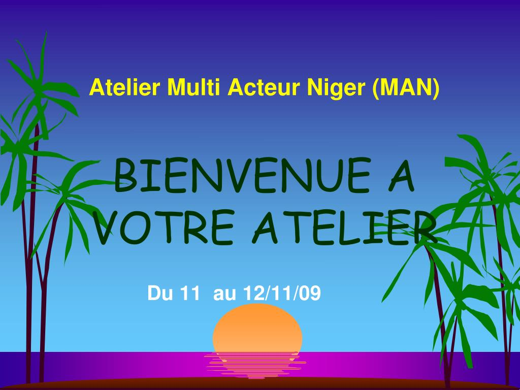 Atelier Multi Acteur Niger (MAN)