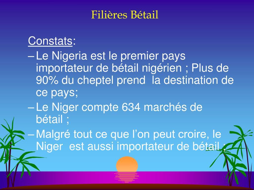 Filières Bétail