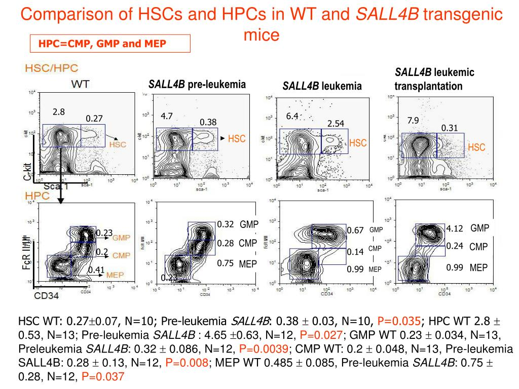 Comparison of HSCs and HPCs in WT and