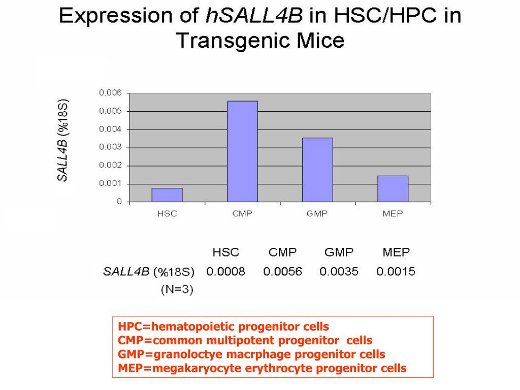 HPC=hematopoietic progenitor cells