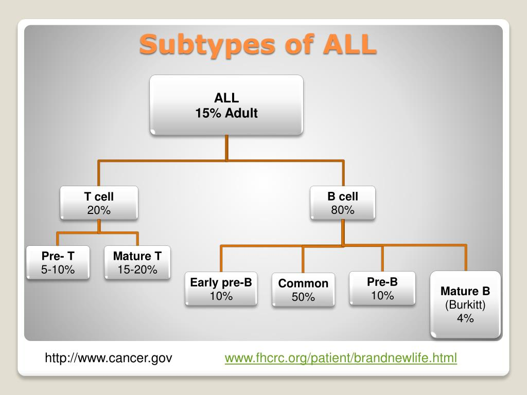 Subtypes of ALL