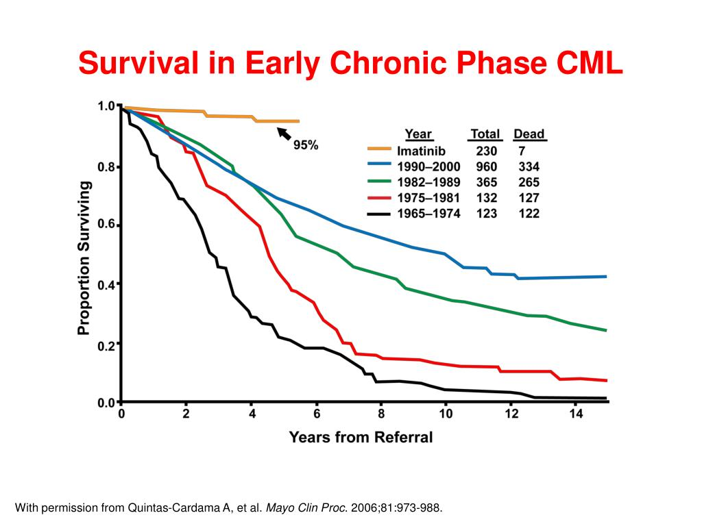 Survival in Early Chronic Phase CML