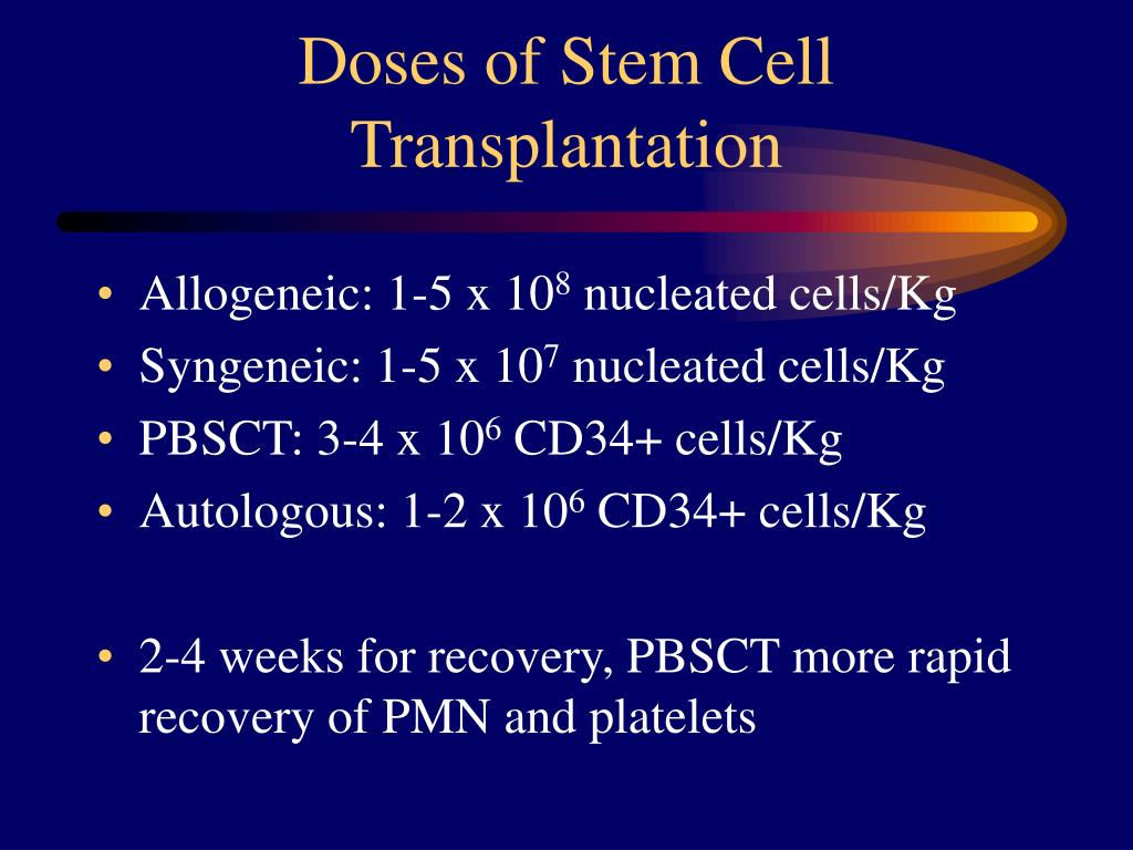 Doses of Stem Cell Transplantation