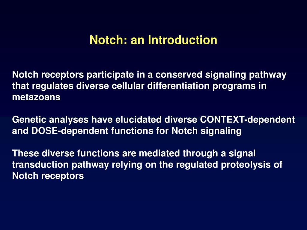 Notch: an Introduction