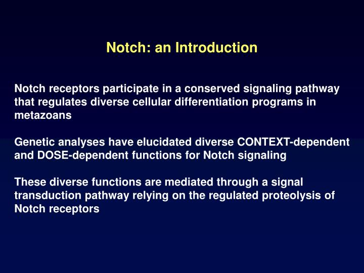 Notch an introduction