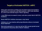 targets of activated notch c myc