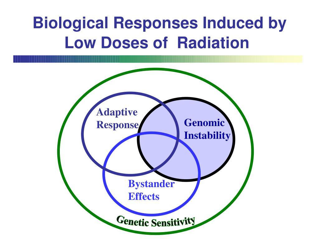 Biological Responses Induced by Low Doses of  Radiation