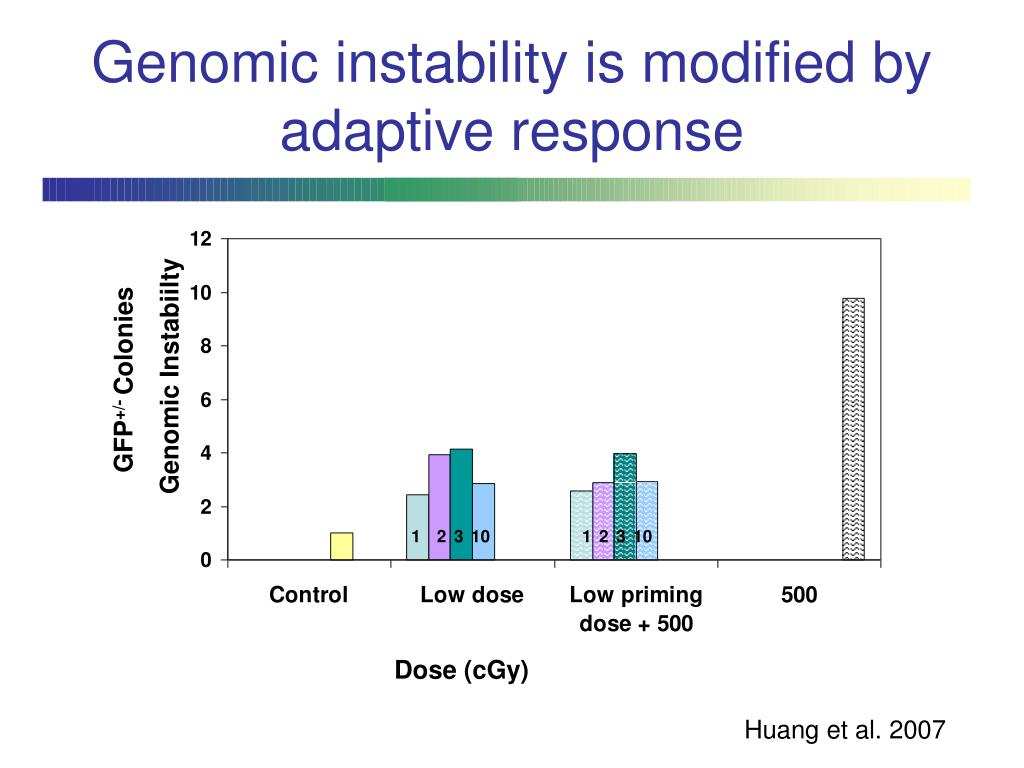 Genomic instability is modified by adaptive response