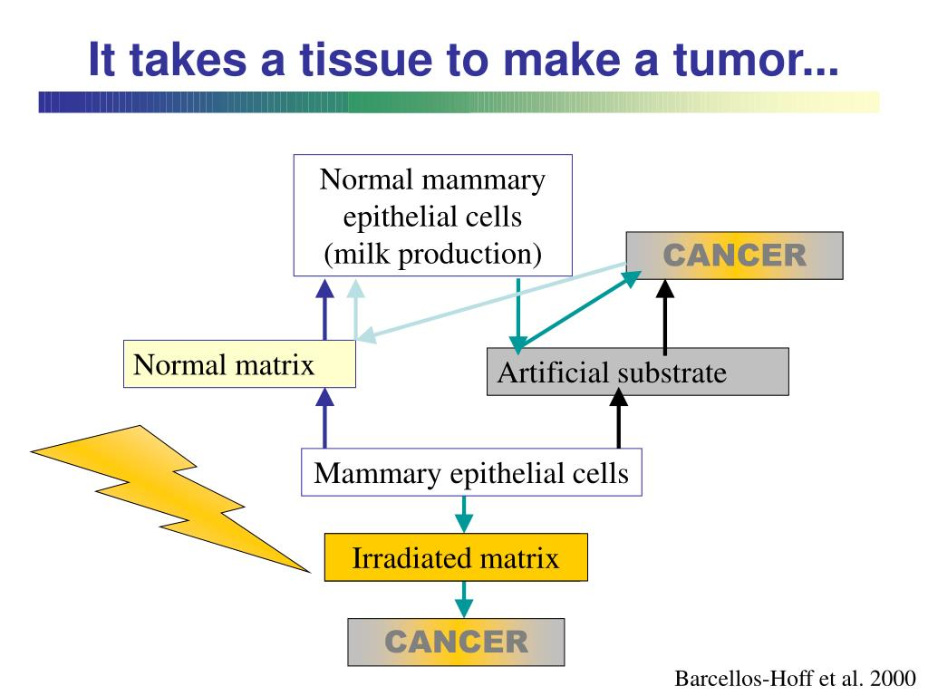It takes a tissue to make a tumor...