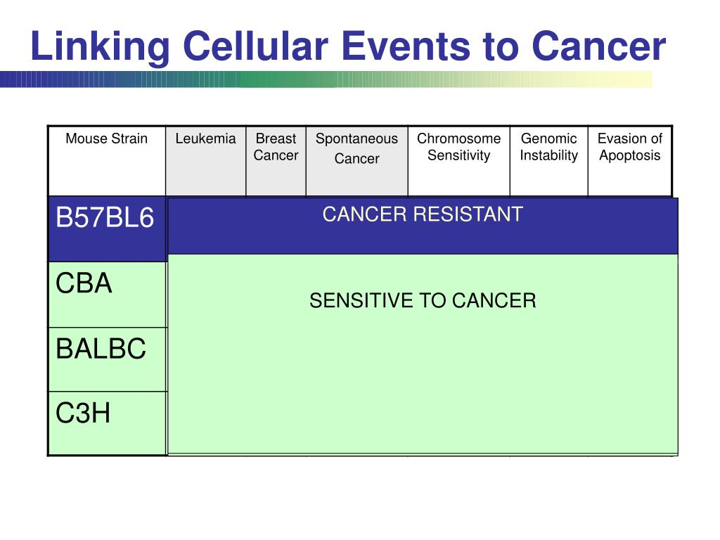 Linking Cellular Events to Cancer