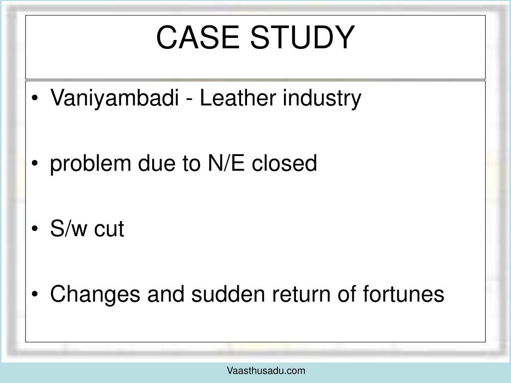 Vaniyambadi - Leather industry